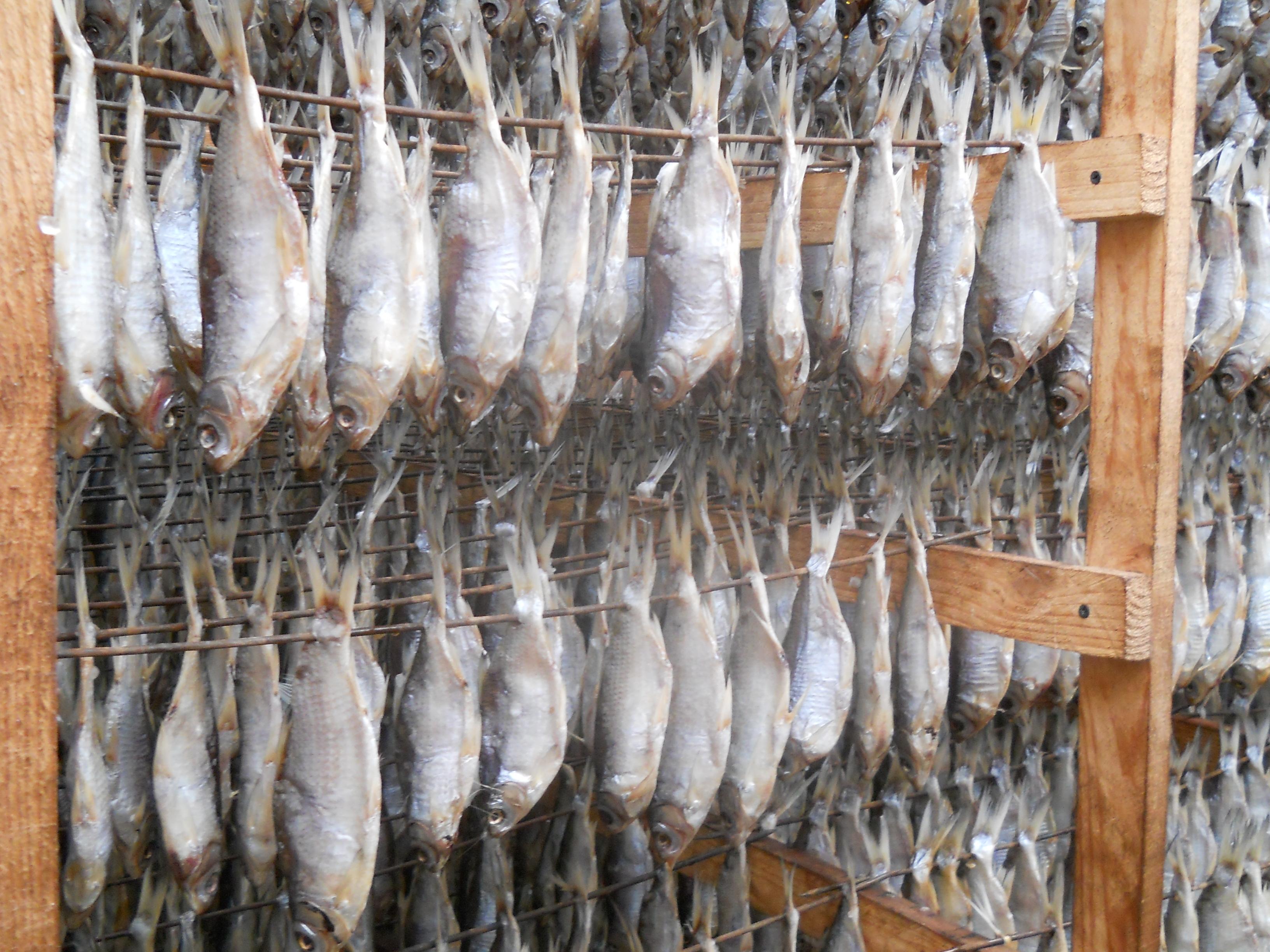Секретные материалы домашней хозяйки. Рыбные тонкости 34